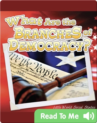 What Are The Branches of Democracy?