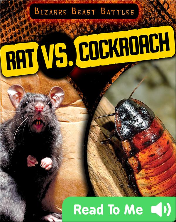 Rat vs. Cockroach