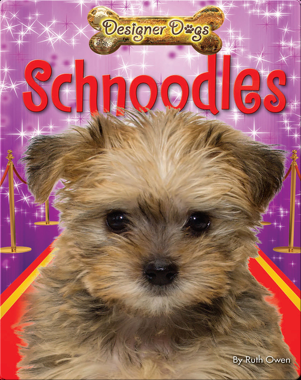 Schnoodles