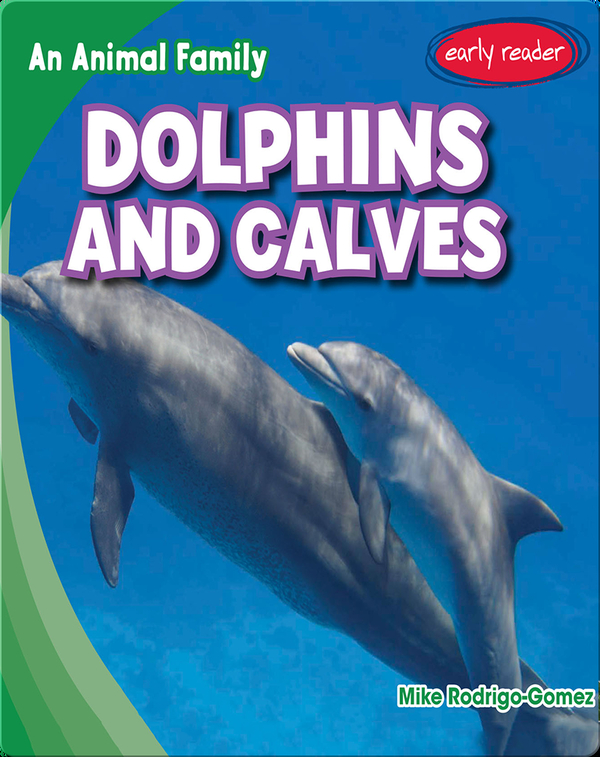 Dolphins and Calves