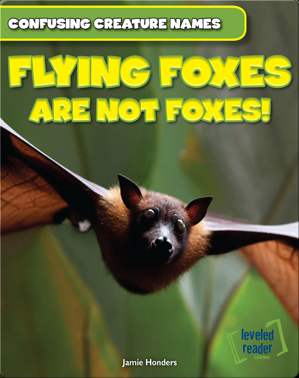 Flying Foxes Are Not Foxes!