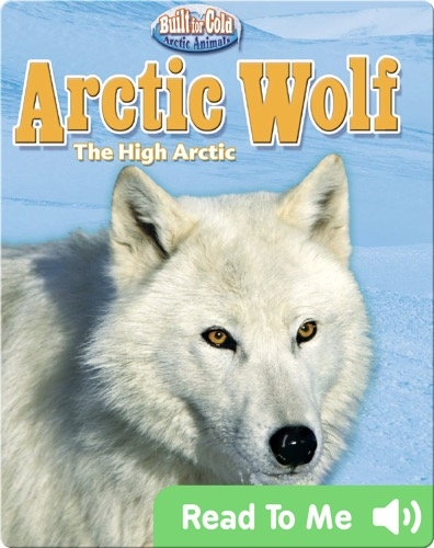 Arctic Wolf: The High Arctic