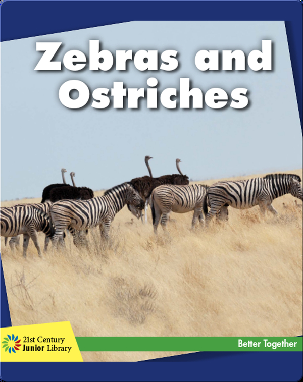 Zebras and Ostriches