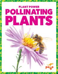 Pollinating Plants