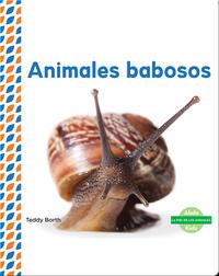 Animales babosos