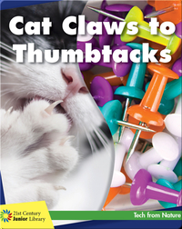 Cat Claws to Thumbtacks