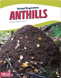 Animal Engineers: Anthills