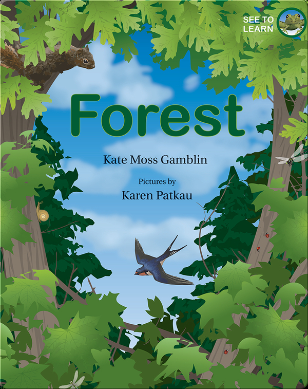 See to Learn: Forest