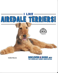 I Like Airedale Terriers!