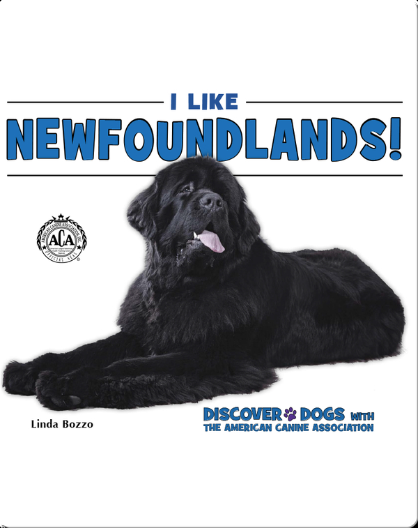 I Like Newfoundlands!