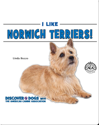 I Like Norwich Terriers!