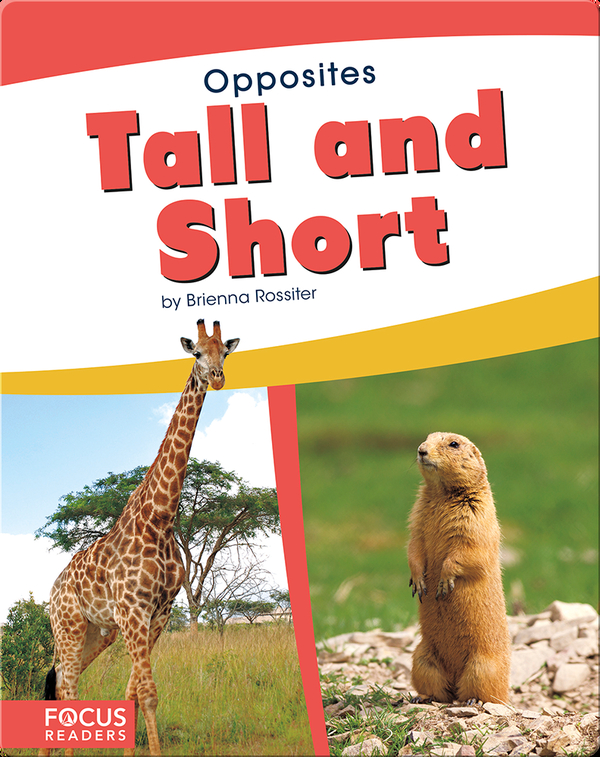 Opposites: Tall and Short