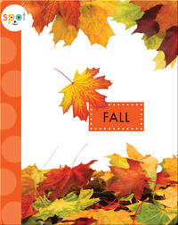 Seasons: Fall