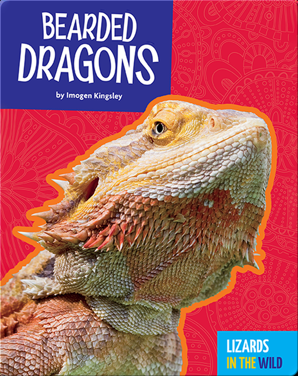 Lizards In The Wild: Bearded Dragons