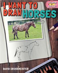 I Want to Draw Horses