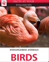Endangered Animals: Birds