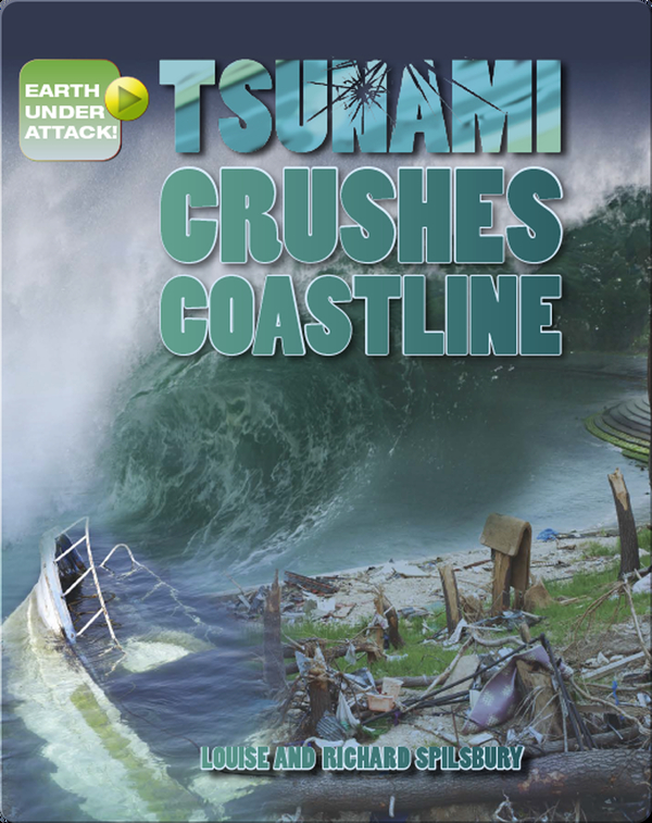 Tsunami Crushes Coastline