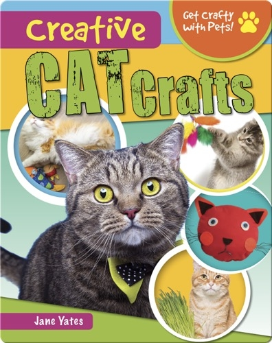 Creative Cat Crafts
