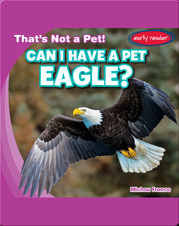 Can I Have a Pet Eagle?