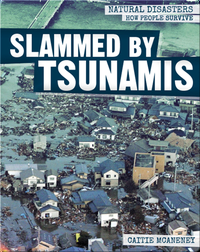 Slammed by Tsunamis