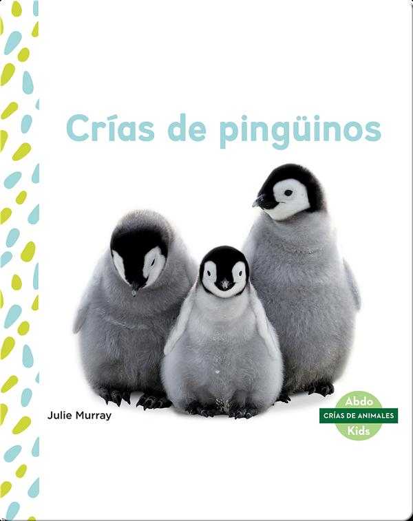 Crías de pingüinos