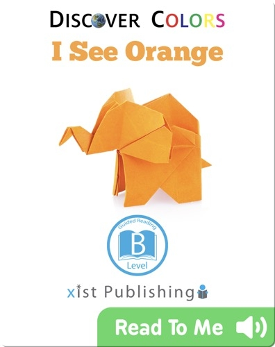 Discover Colors: I See Orange