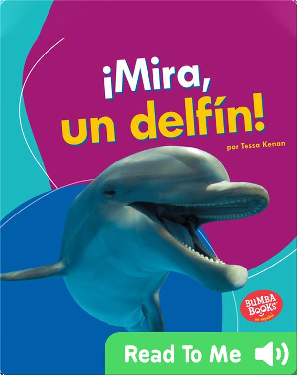¡Mira, un delfín! (Look, a Dolphin!)