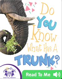 Do You Know What Has A Trunk?