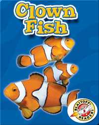 Clown Fish: Oceans Alive