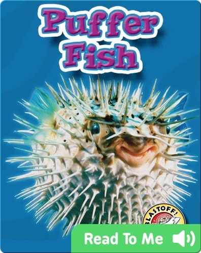 Puffer Fish: Oceans Alive