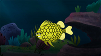 I'm A Pineapple Fish
