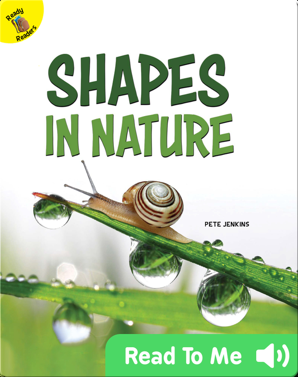 Shapes in Nature