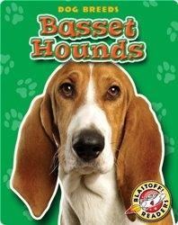Basset Hounds: Dog Breeds