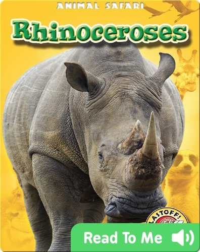 Rhinoceroses: Animal Safari