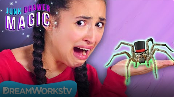 Pet Spider | JUNK DRAWER MAGIC