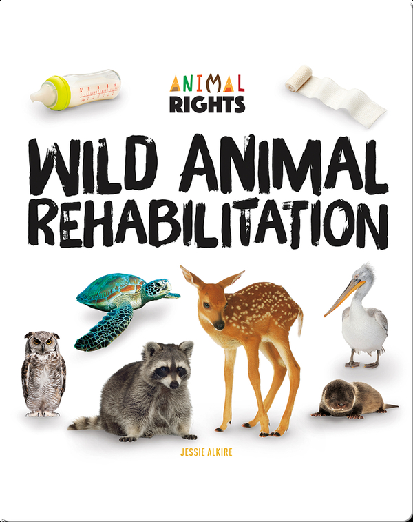 Wild Animal Rehabilitation