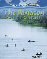The Amazon River in a Rain Forest