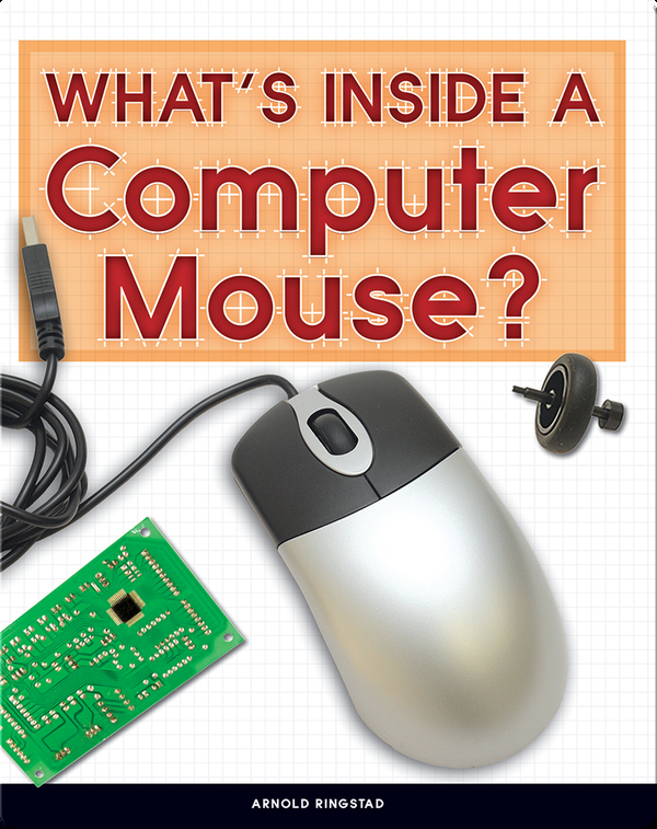 What's Inside a Computer Mouse?