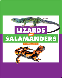 Comparing Animal Differences: Lizards and Salamanders