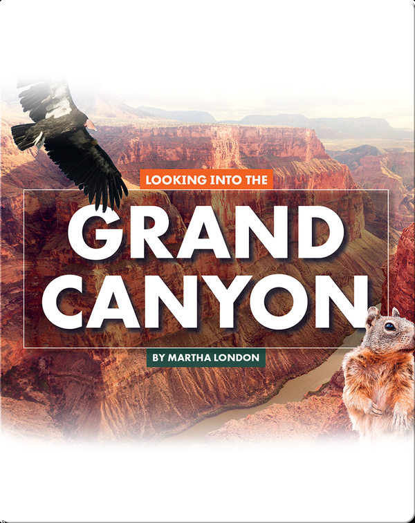 Looking at Layers: Looking Into the Grand Canyon