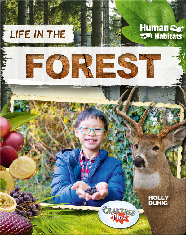 Human Habitats: Life in the Forest