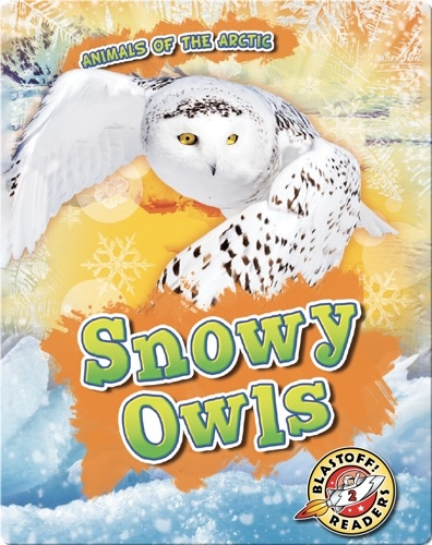 Animals of the Arctic: Snowy Owls