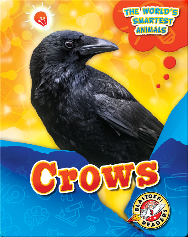 The World's Smartest Animals: Crows