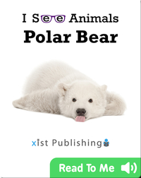 I See Animals: Polar Bear