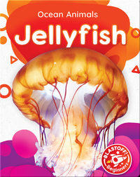 Ocean Animals: Jellyfish