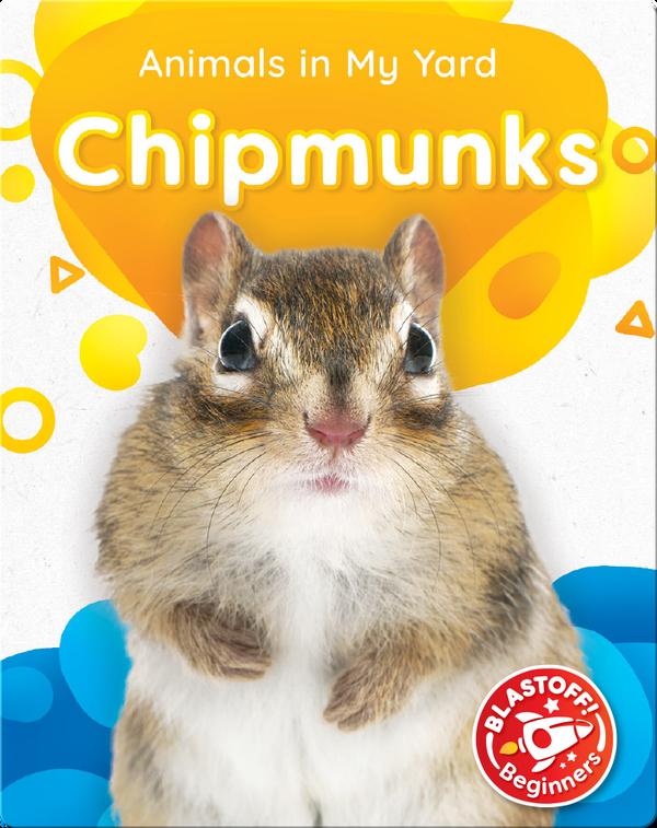 Animals in My Yard: Chipmunks
