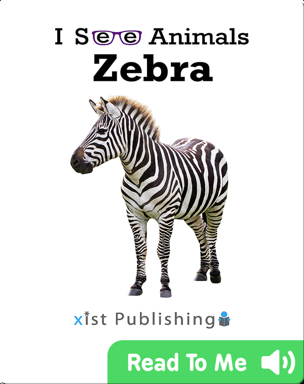 I See Animals: Zebra