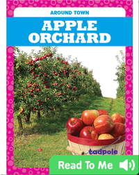 Around Town: Apple Orchard
