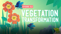 Crash Course Kids: Vegetation Transformation