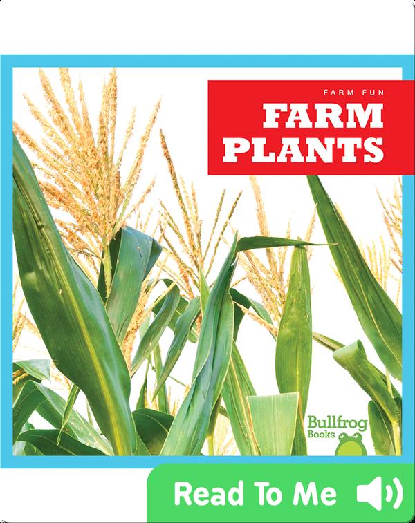 Farm Fun: Farm Plants